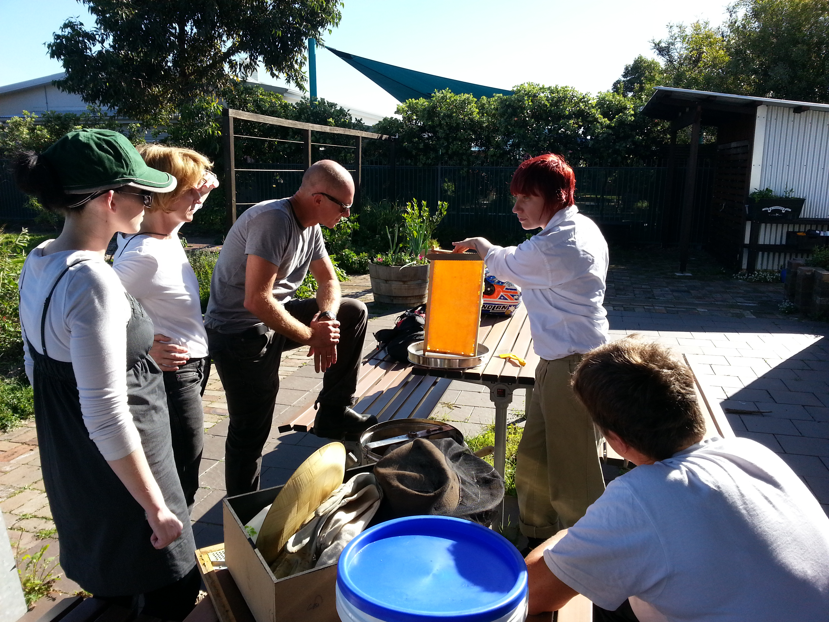 courses urban beekeeping and supplies